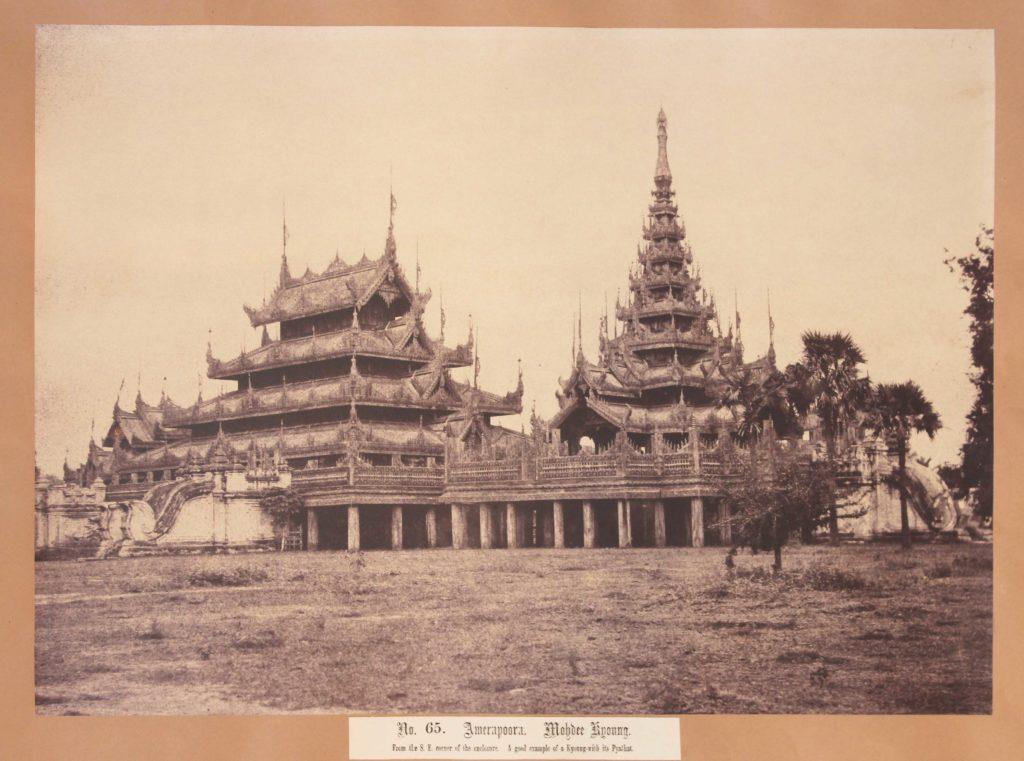 TRIPE, Linnaeus. Mohdee Kyoung, Amerapoora, Burma.